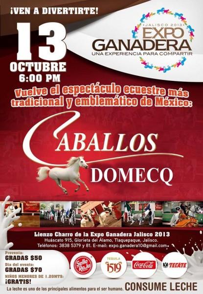 Caballo Domeq