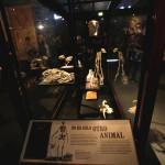 Museo Trompo Mágico